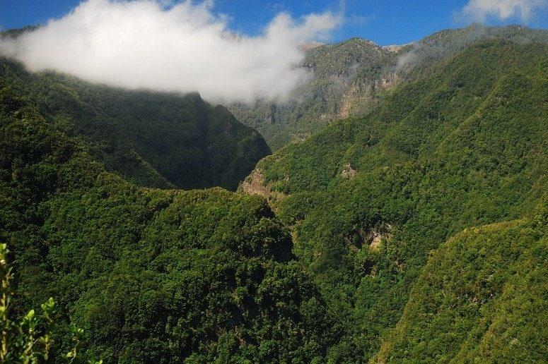 Berge, grün, La Palma