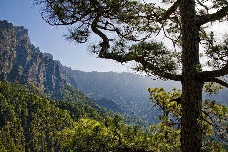 View into the Caldera de Taburiente