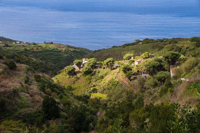 The green North of La Palma