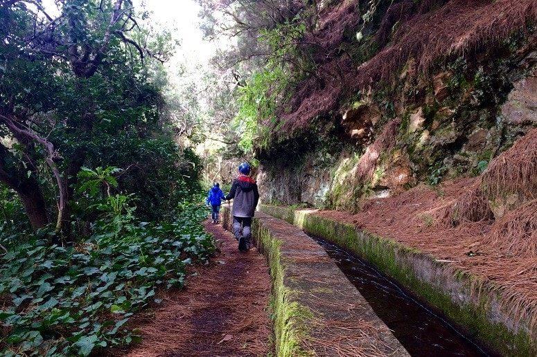 Marcos y Cordero, La Palma