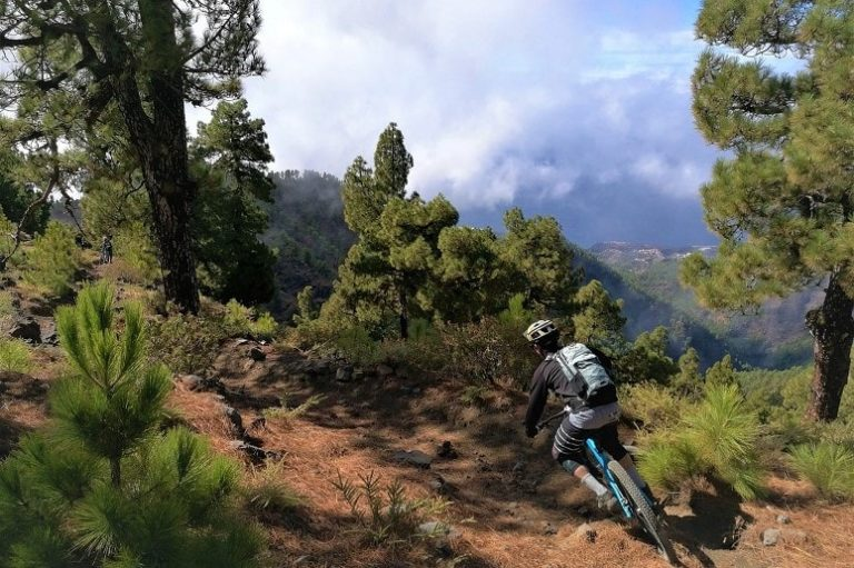Mountain bike tour on La Palma