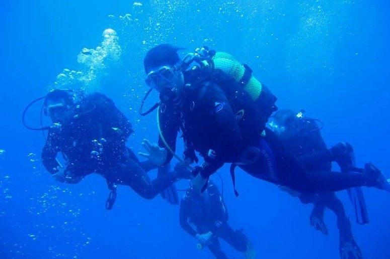 Dive in the Atlantic, La Palma
