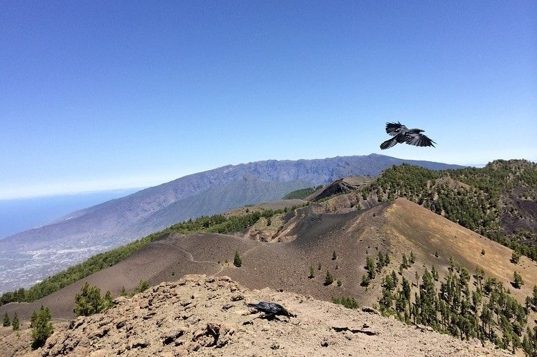 View to the Volcano Route on La Palma