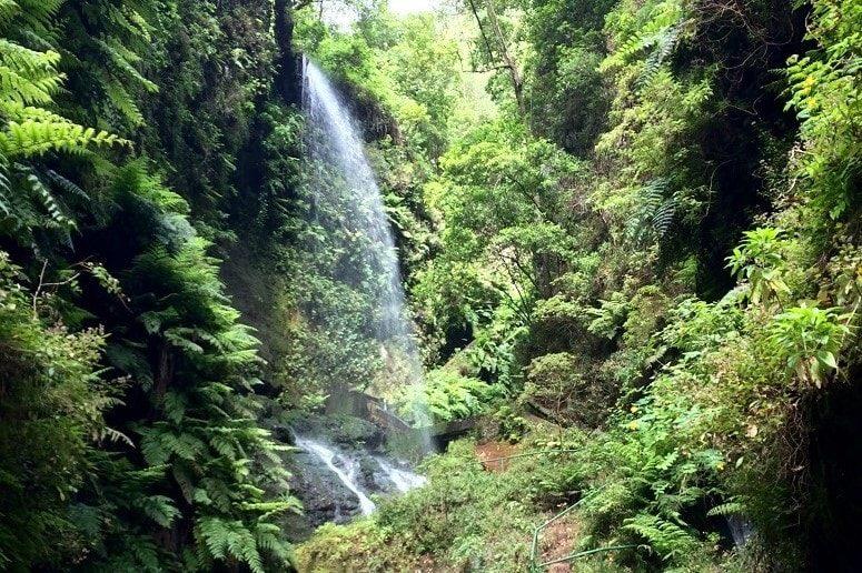 Waterfall, Los Tilos, La Palma