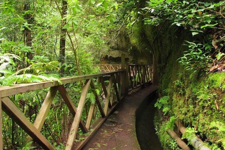 Los Tilos, Weg zum Wasserfall