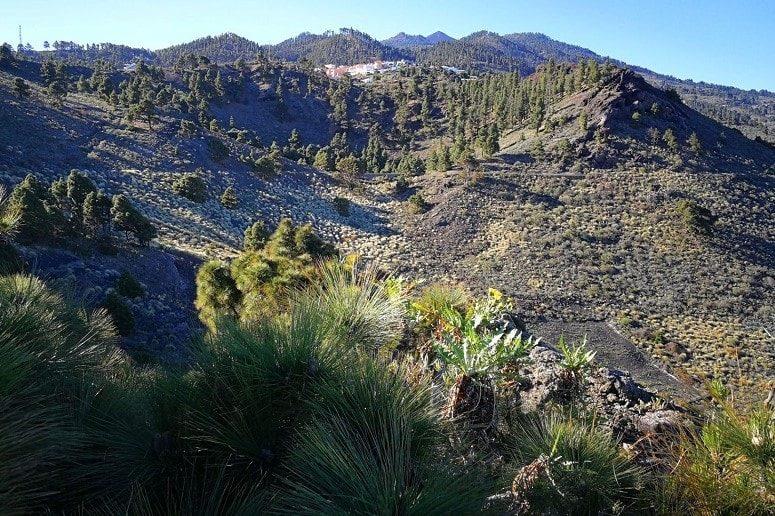 Blick auf Los Canarios, La Palma
