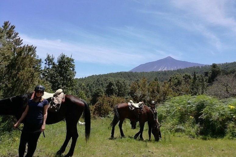 Caballos, Tenerife, Paseo a Caballo