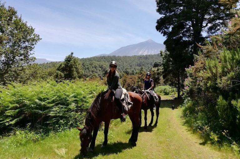 Paseo a Caballo, Tenerife