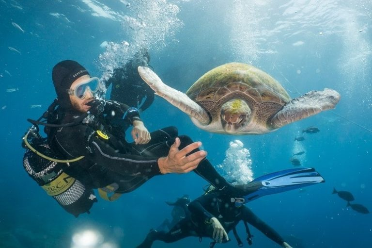 Diver and Turtle, Tenerife