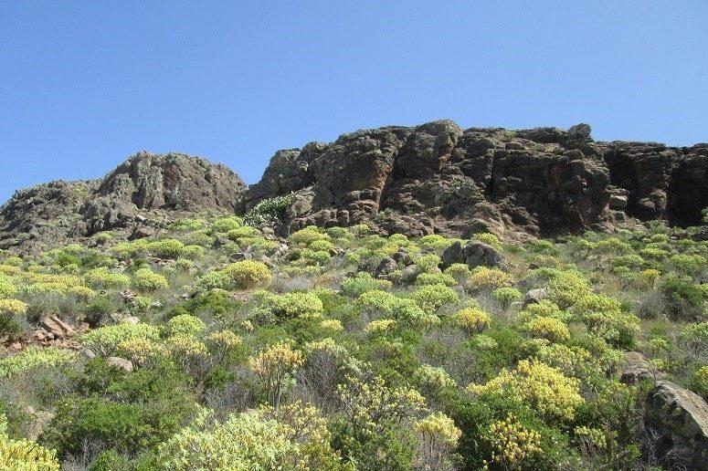 Wandern auf La Gomera, Landschaft