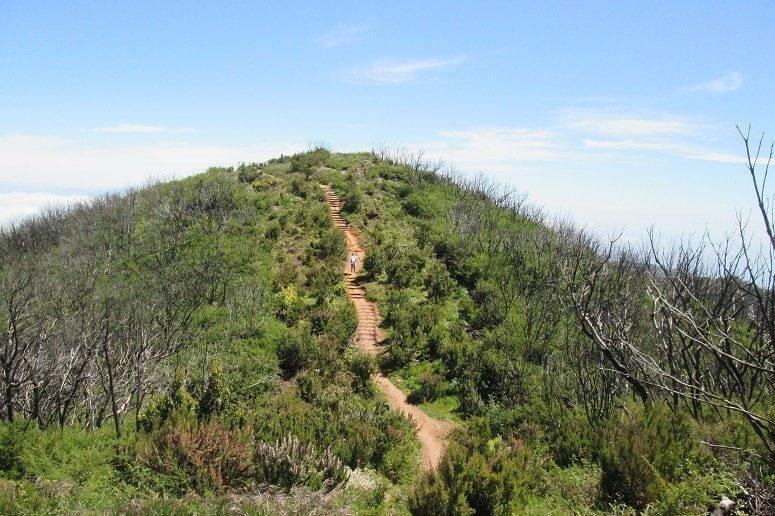 Zwei Gipfel Wanderung, La Gomera