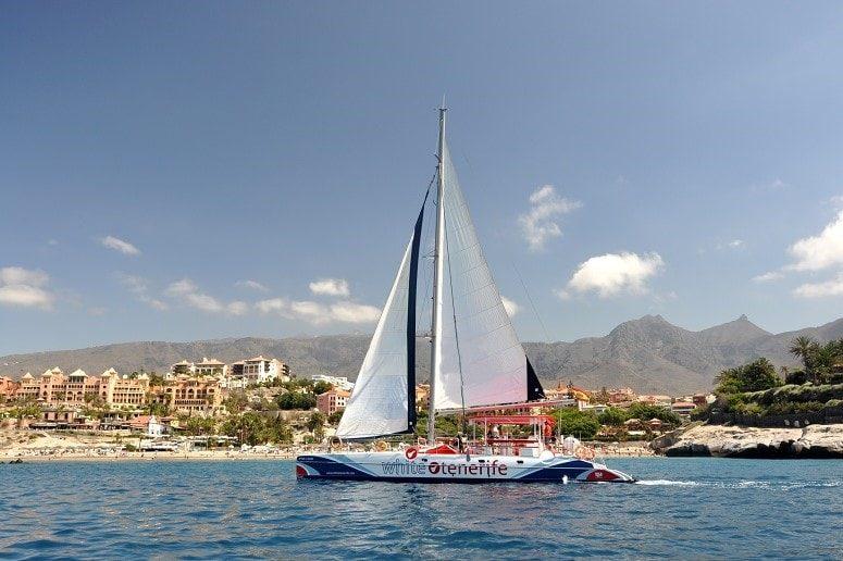 Catamarán, Costa del Sur, Tenerife