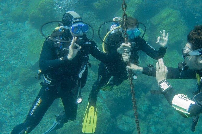 Diving, Tenerife, Dives