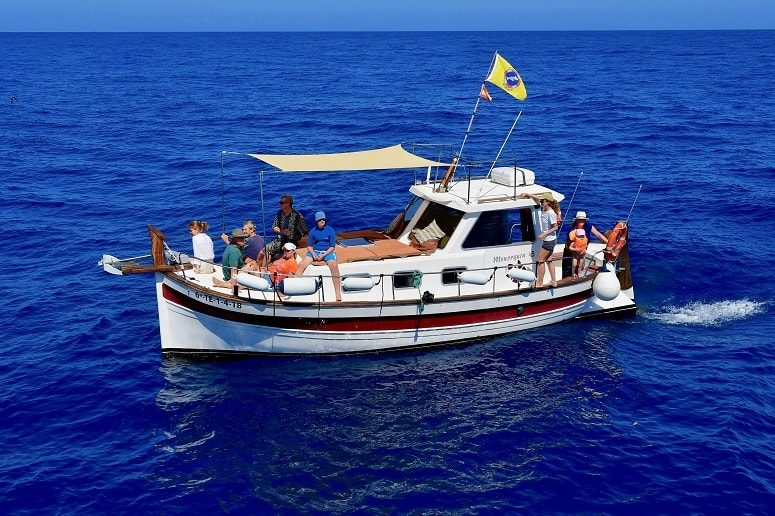 Barco, Pura Vida, La Gomera