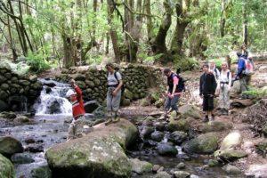 Fluss, La Gomera, Wanderung, Gruppe