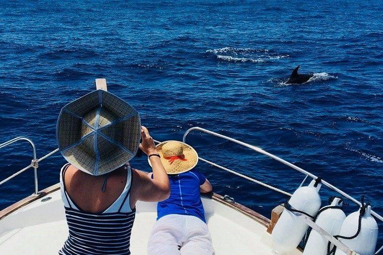 Avistamiento de Ballenas, La Gomera